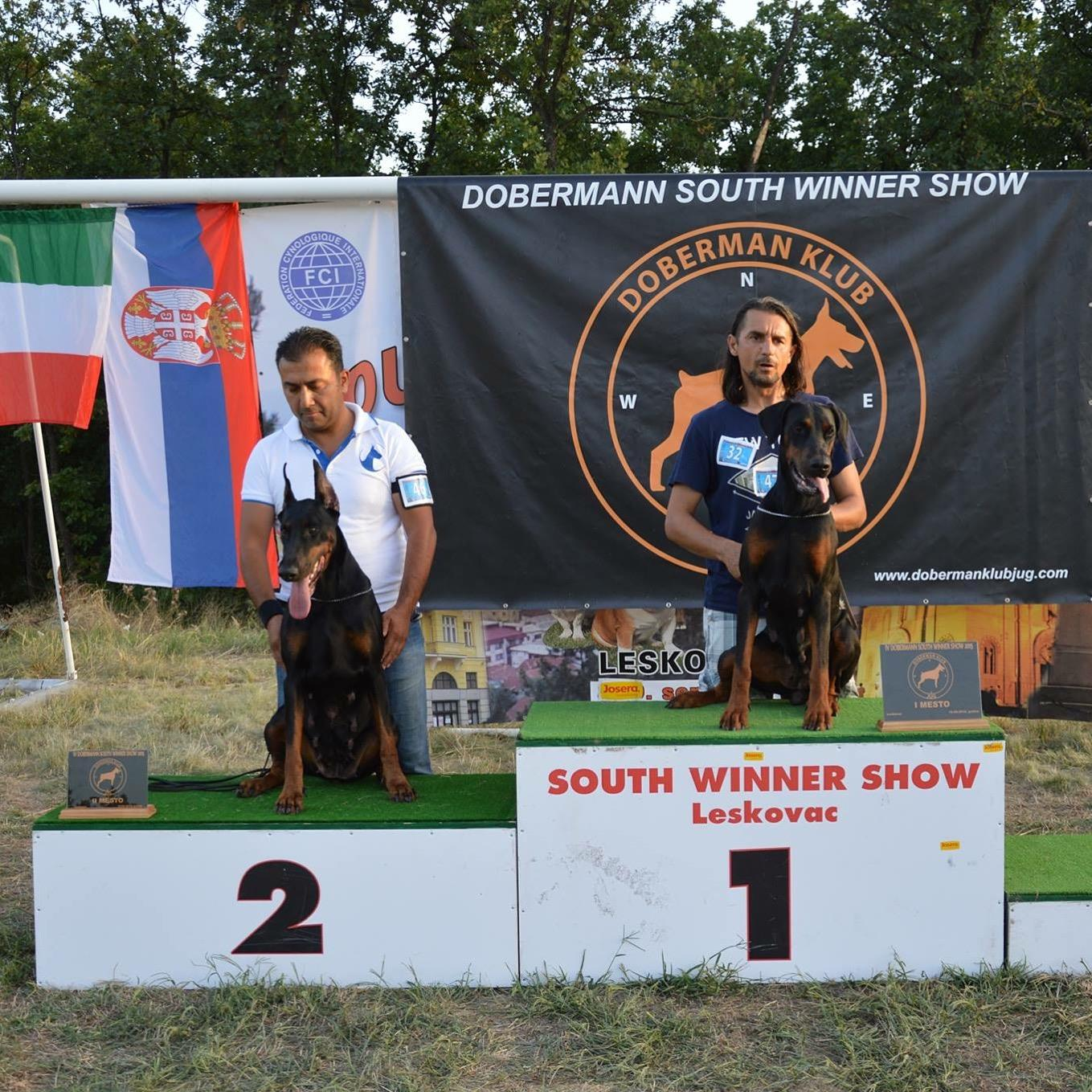 Knights of Night Doberman  SIRBISTAN LESKOVAC DOBERMAN KLUP SHOW 2.